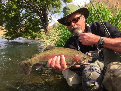 Steve Hanson with a football-shaped Deschutes River redside.